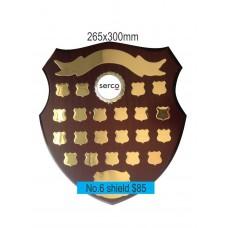 Shield3No.6